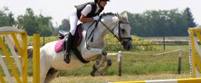 Rezultate bune pentru Pony Club Arad