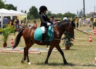 În acest weekend se desfăţoară a V-a ediţie a Cupei Pony