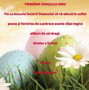 ineu_paste