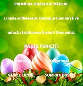 nadlac_paste