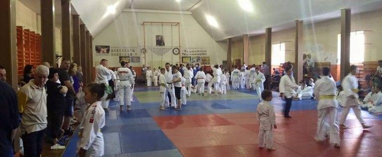 Sărbătoare pe tatami, cu ocazia Zilei Judoului Arădean