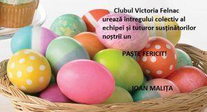 felnac_paste