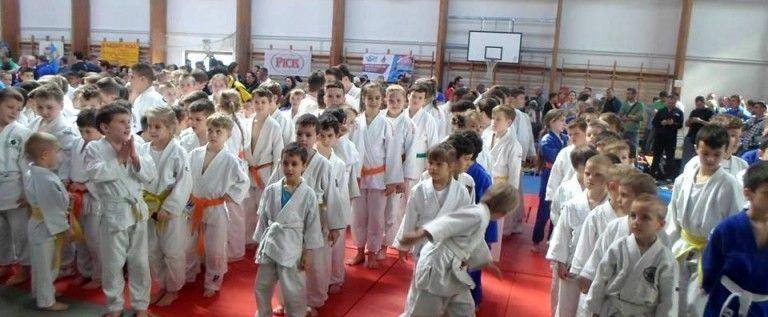 Micii judoka ai CSM-ului au cucerit medalii în Ungaria