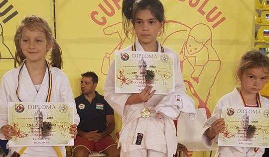 Micii judoka arădeni au cucerit medalii la Cupa Nordului