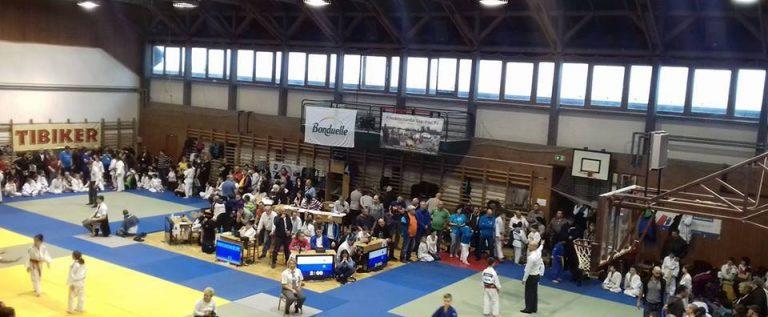 Micii judoka arădeni au cucerit medalii, în Ungaria