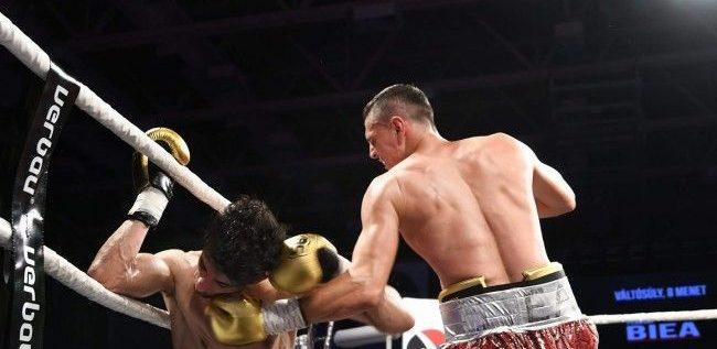 Campionii din ring se înfruntă, în noiembrie, la Arad