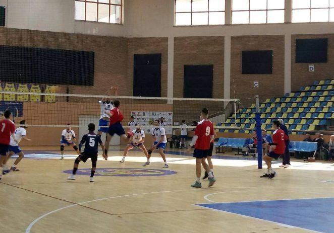 Aradul mai aduce o echipă în elită: Pro Volei a confirmat, astăzi, participarea în prima ligă!